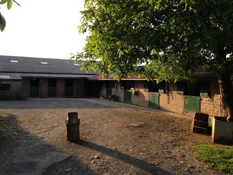 Tuition & Equestrian Facilities Tenbury Wells - Stables