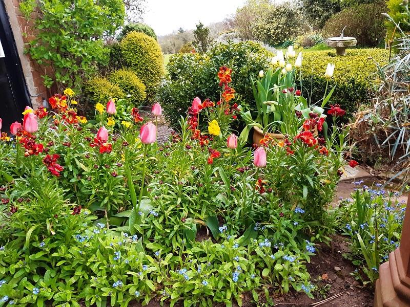 Garden Open Days